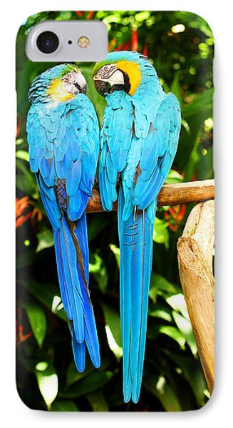 A Pair Of Parrots Phone Case by Marilyn Hunt