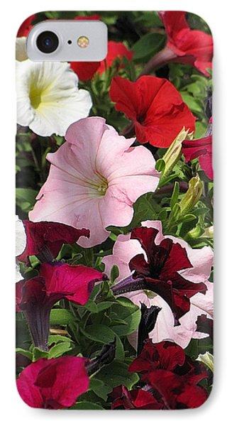 A Plethora Of Petunias IPhone Case