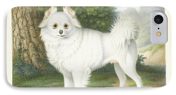 A Pomeranian In A Landscape IPhone Case by MotionAge Designs