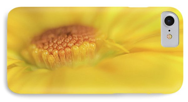 A Ray Of Sunshine IPhone Case by Roy McPeak