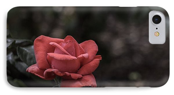 A Red Beauty IPhone Case