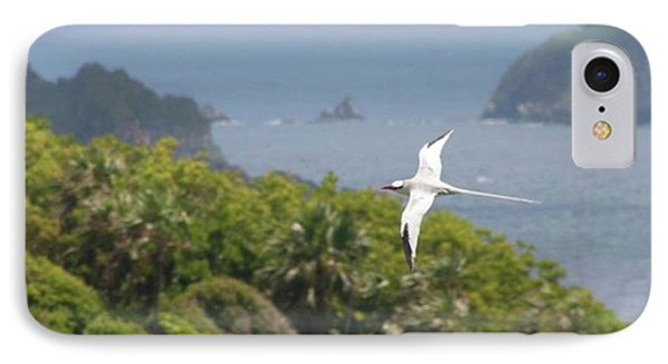 A Red-billed Tropicbird (phaethon Phone Case by John Edwards