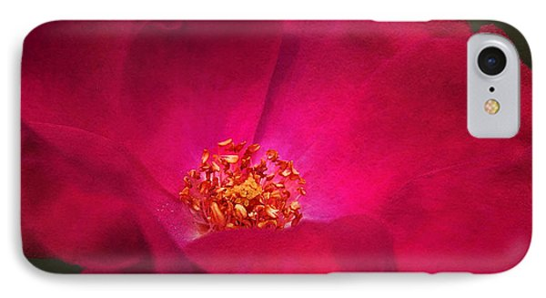 A Rose For My Love IPhone Case by Kathi Mirto