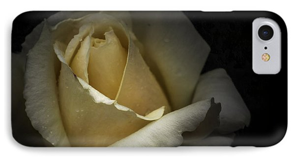 IPhone Case featuring the photograph A Rose by Ryan Photography