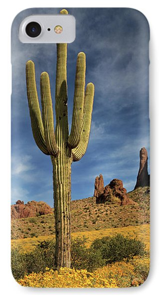 A Saguaro In Spring IPhone Case by James Eddy