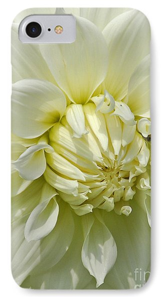 A Secret Visitor IPhone Case by Cindy Manero