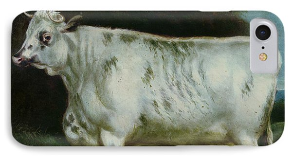 A Shorthorn Cow IPhone Case