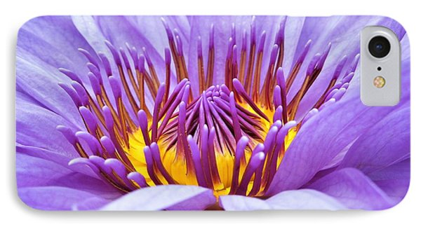 A Sliken Purple Water Lily IPhone Case