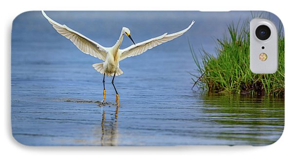 A Snowy Egret Dip-fishing IPhone Case by Rick Berk