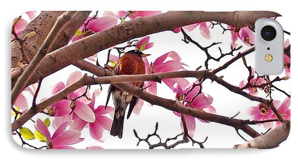 A Songbird In The Magnolia Tree IPhone Case by Rona Black