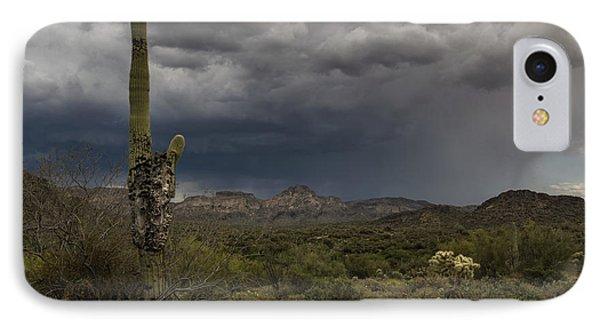 A Sonoran Sentinel  IPhone Case
