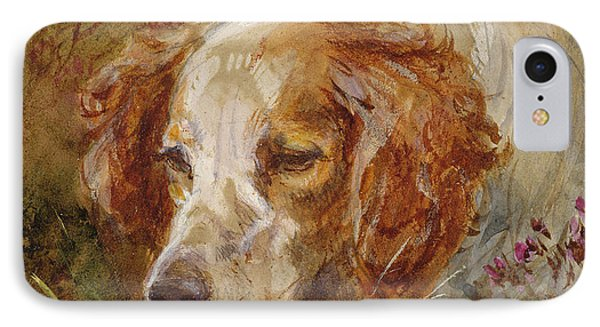 A Spaniel IPhone Case by James Hardy Junior