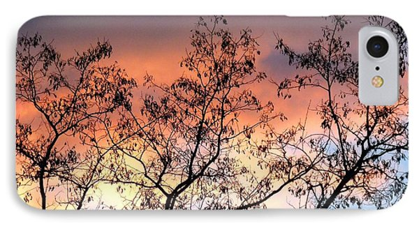 IPhone Case featuring the photograph A Splendid Silhouette by Will Borden