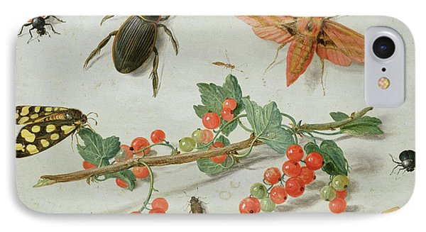 Magpies iPhone 7 Case - A Sprig Of Redcurrants With An Elephant Hawk Moth, A Magpie Moth And Other Insects, 1657 by Jan Van Kessel