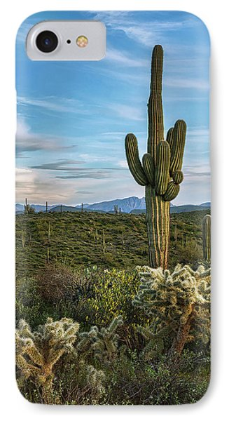 IPhone Case featuring the photograph A Spring Evening In The Sonoran  by Saija Lehtonen