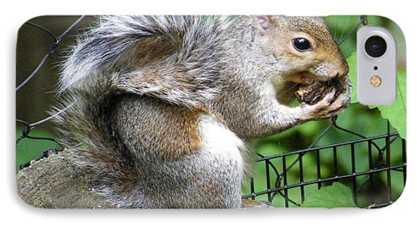 A Squirrelly Portrait IPhone Case