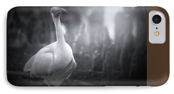 A Stroll Through The Forest IPhone Case by Mark Andrew Thomas