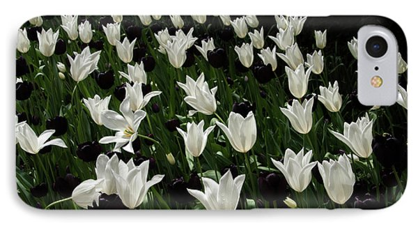 A Study In Black And White Tulips IPhone Case