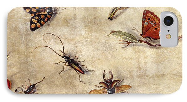 A Study Of Various Insects, Fruit And Animals IPhone Case