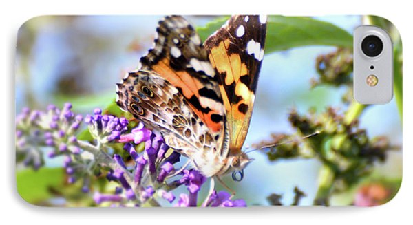 IPhone Case featuring the photograph A Summer Lady - Painted Lady Butterfly by Kerri Farley