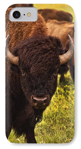 A Thoughful Moment IPhone Case by Tamyra Ayles