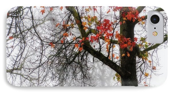 A Trace Of Autumn IPhone Case by Terry Davis