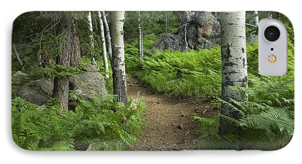 A Tranquil Path  IPhone Case by Sue Cullumber