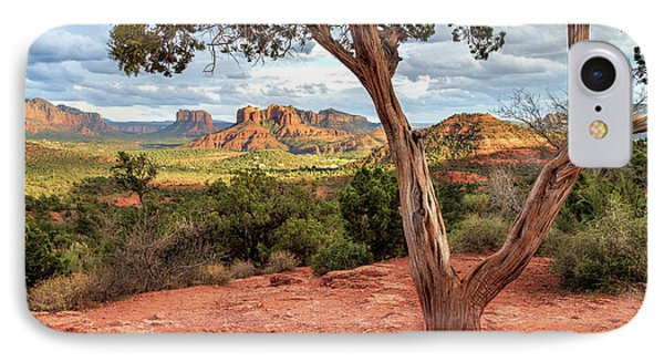 A Tree In Sedona IPhone Case