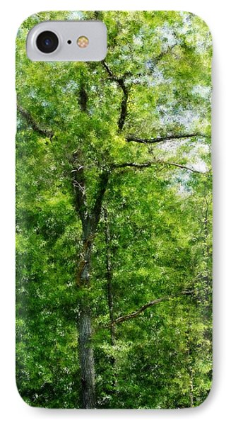 A Tree In The Woods At The Hacienda  Phone Case by David Lane
