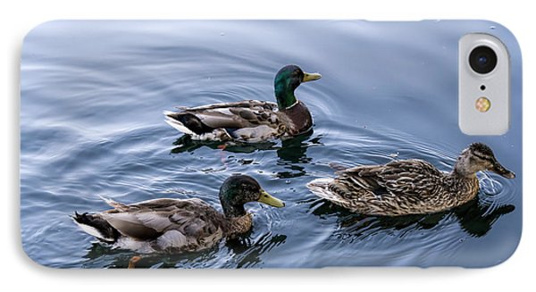 A Trio Of Mallards IPhone Case by David  Hollingworth