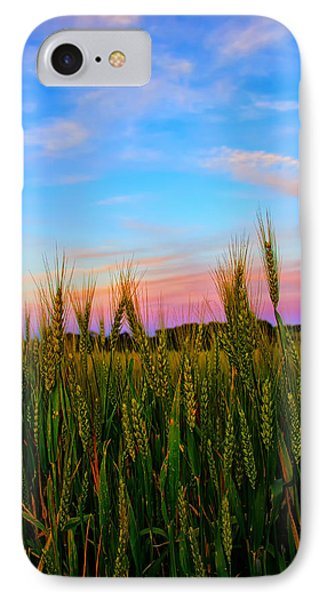 A View From Crop Level IPhone Case by Bill Tiepelman