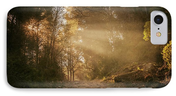 A Walk In The Woods IPhone Case by Joan Carroll