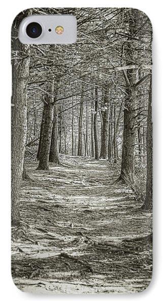 A Walk In Walden Woods IPhone Case by Ike Krieger