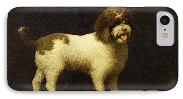 A Water Spaniel IPhone Case by George Stubbs