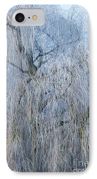 A Winter Willow Weeps IPhone Case