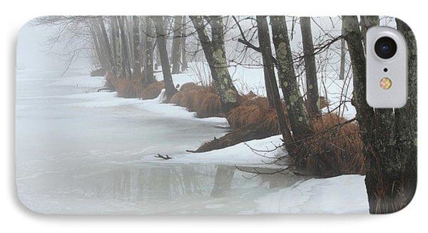 A Winter's Scene Phone Case by Karol Livote