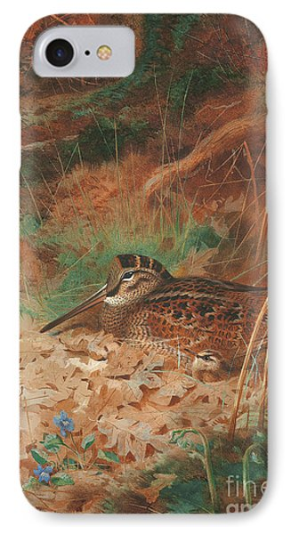 A Woodcock And Chick In Undergrowth IPhone Case by Archibald Thorburn