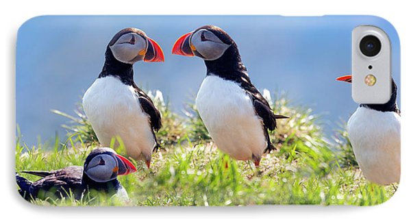 A World Of Puffins IPhone 7 Case