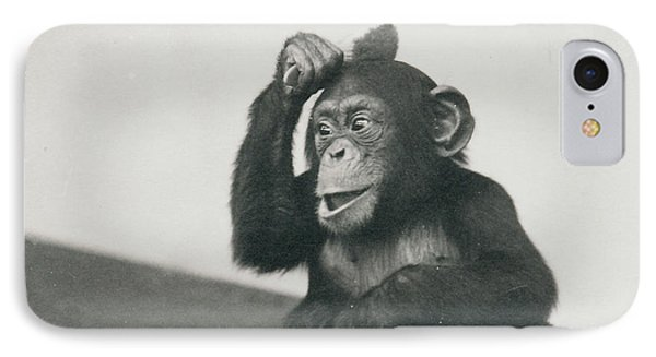 A Young Chimpanzee Playing With A Brush IPhone 7 Case