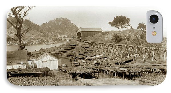 Abalone Drying Racks On Coal Chute Point Sept 19, 1905 IPhone Case by California Views Mr Pat Hathaway Archives