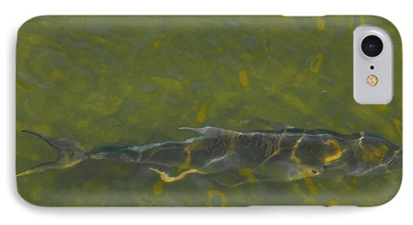 Abstract Fish 2 IPhone Case by Carolyn Dalessandro