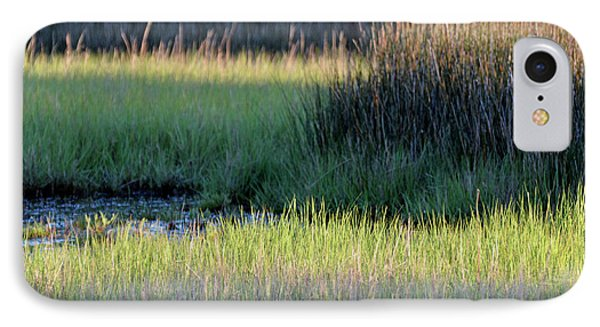 IPhone Case featuring the photograph Abstract Marsh Grasses by Bruce Gourley