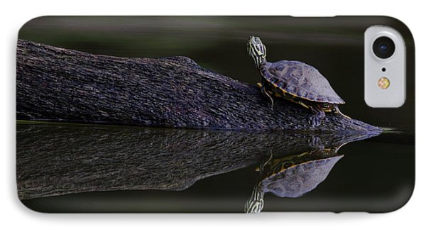IPhone Case featuring the photograph Abstract Turtle by Douglas Stucky
