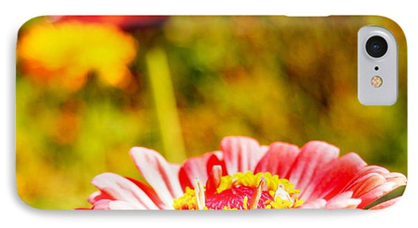 Abstract Zinnia IPhone Case by Beth Collins