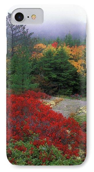 Acadia National Park Foliage Phone Case by John Burk