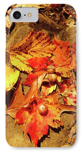 IPhone Case featuring the photograph Acorns Fall Maple Leaf by Meta Gatschenberger