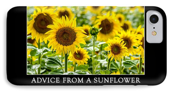 Advice From A Sunflower IPhone Case