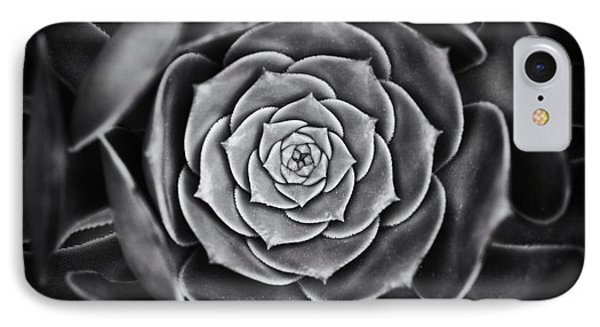 Aeonium Arboreum IPhone Case by Tim Gainey
