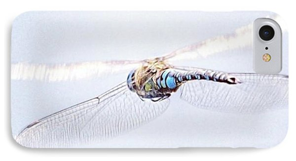 Aeshna Juncea - Common Hawker In IPhone Case by John Edwards