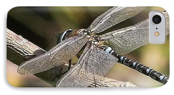 Aeshna Juncea - Common Hawker Taken At IPhone Case by John Edwards